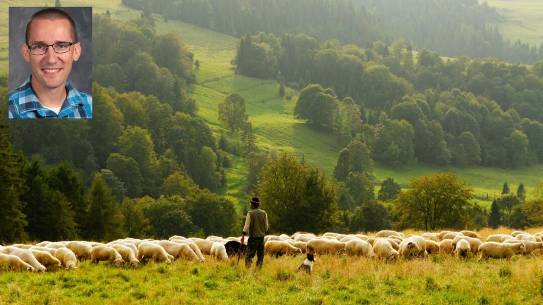 Life Under the Good Shepherd