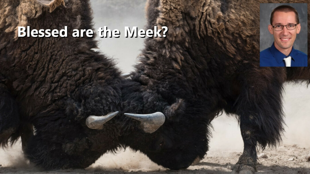 Blessed are the Meek?
